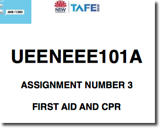 OHS UEENEEE101A online completed