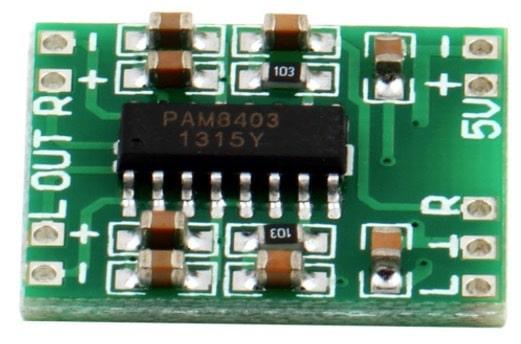 class D amp module